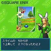dqmb2_090330_10.jpg